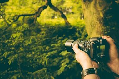 動画制作に必要な機材5:ビデオカメラ以外のカメラ