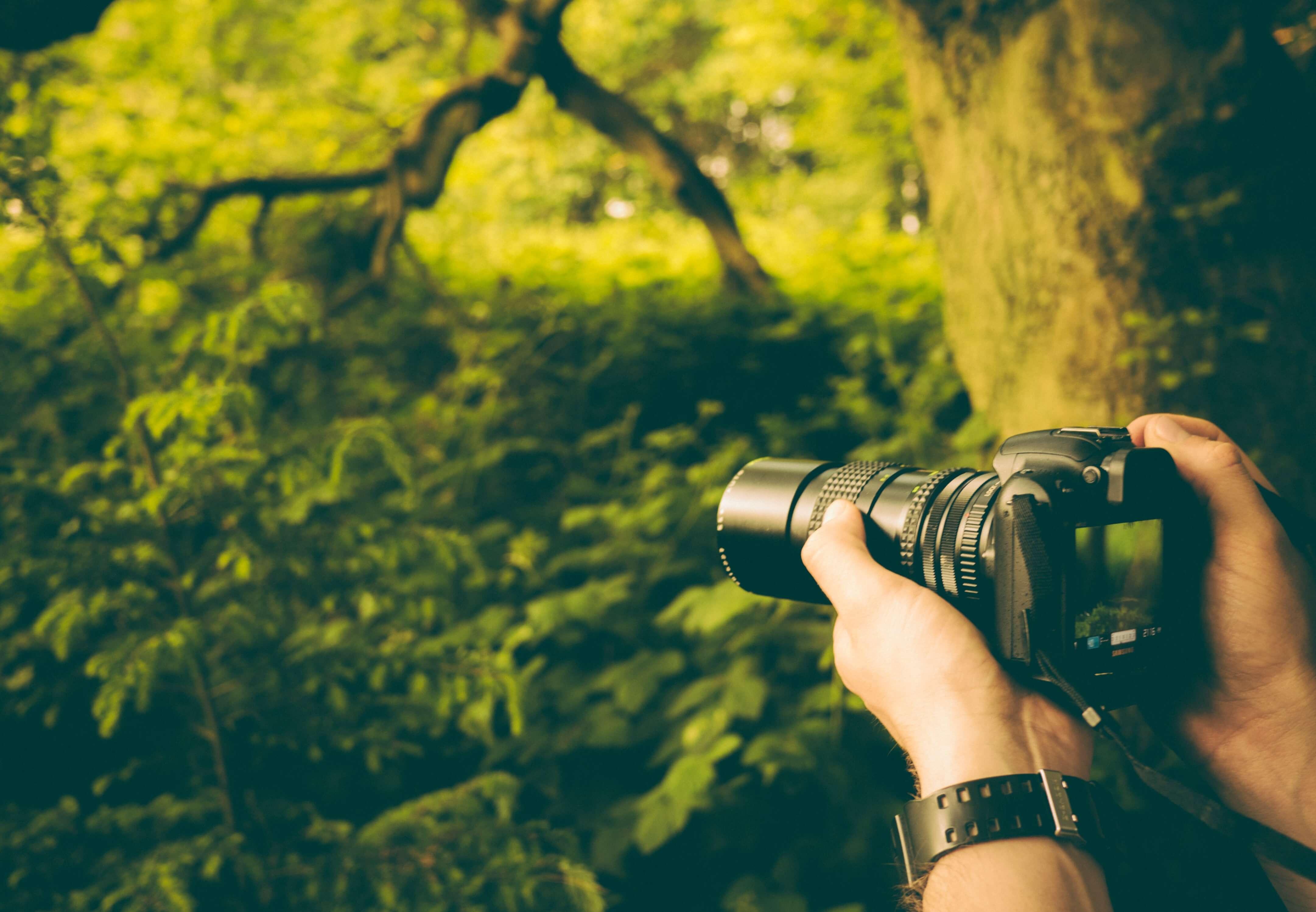 動画撮影はビデオカメラと一眼レフどっち?今は一眼ムービーが当たり前?