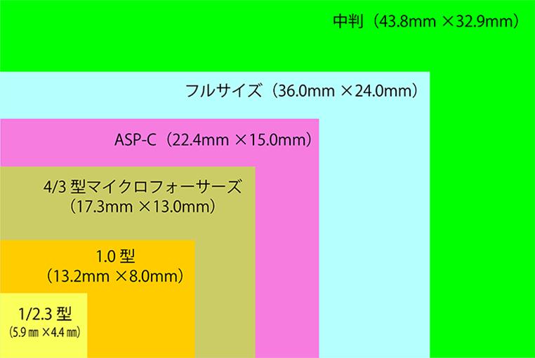 デジタル一眼レフ センサーサイズ表