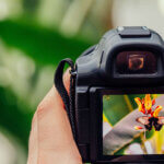 Youtubeの動画撮影におすすめのカメラ11選|一眼とビデオカメラどっち?