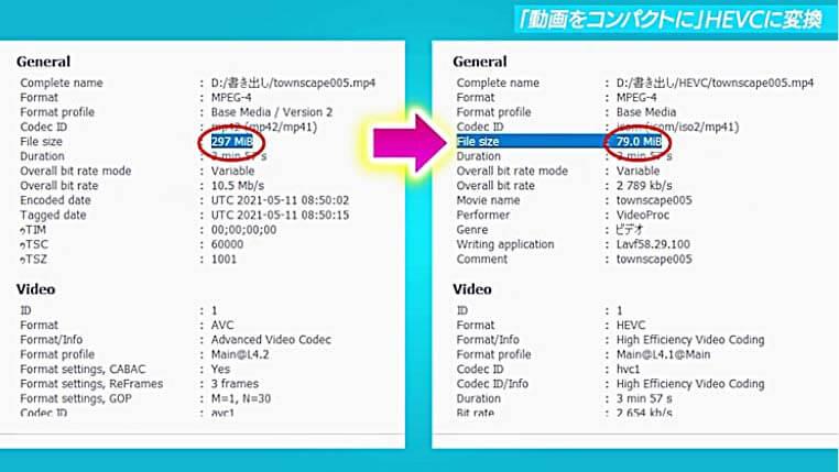 VideoProcの動画圧縮データ